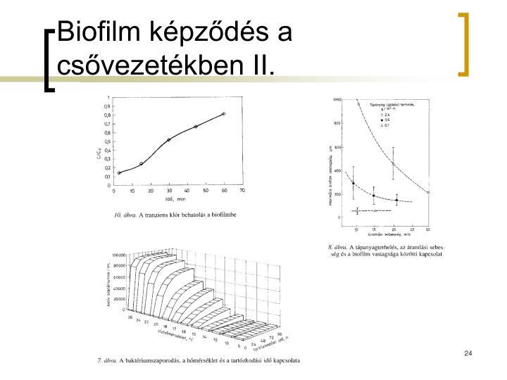 Biofilm képződés a csővezetékben II.
