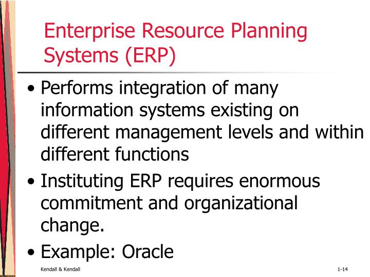 Enterprise Resource Planning Systems (ERP)