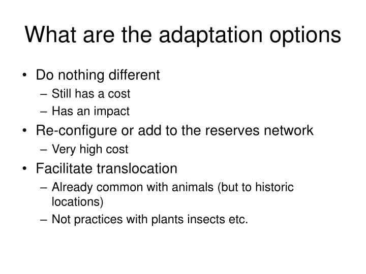 What are the adaptation options