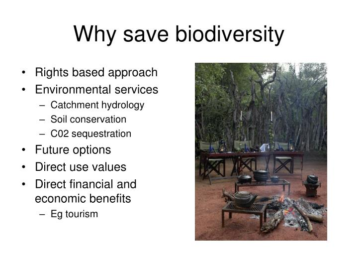 Why save biodiversity