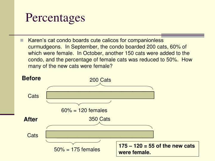 200 Cats