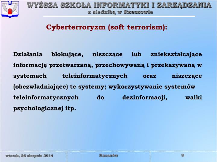 Cyberterroryzm (soft terrorism):