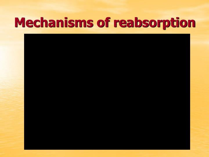 Mechanisms of reabsorption