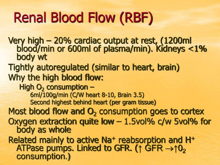 Renal Blood Flow (RBF)