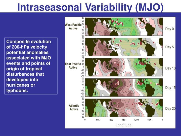 Intraseasonal Variability (MJO)