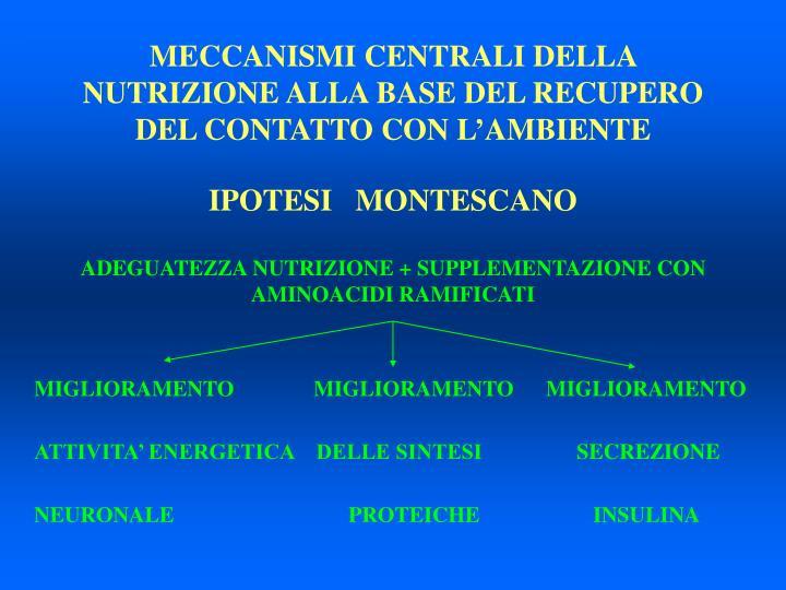 MECCANISMI CENTRALI DELLA NUTRIZIONE ALLA BASE DEL RECUPERO DEL CONTATTO CON L'AMBIENTE