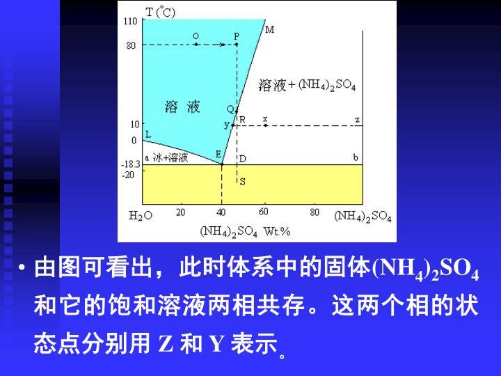 由图可看出,此时体系中的固体(