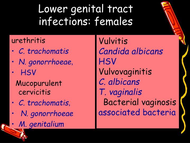 Lower genital tract infections: females