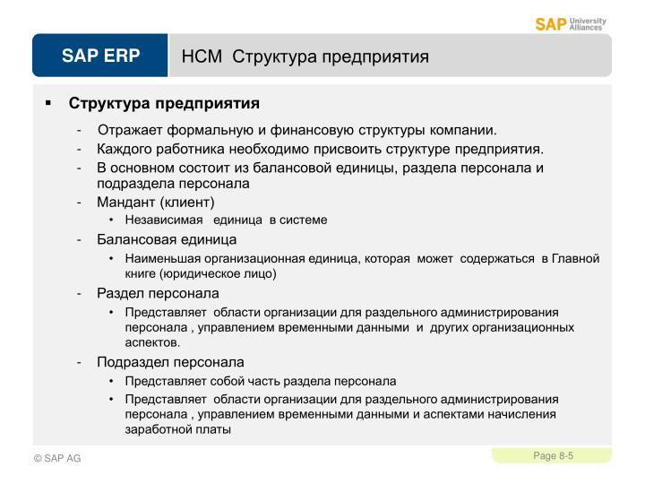 НСМ  Структура предприятия