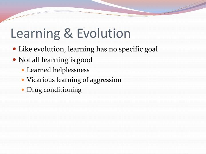 Learning & Evolution