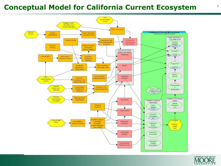 Conceptual Model for California Current Ecosystem
