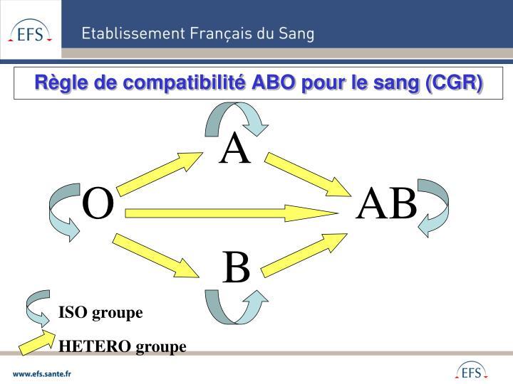 Règle de compatibilité ABO pour le sang (CGR)