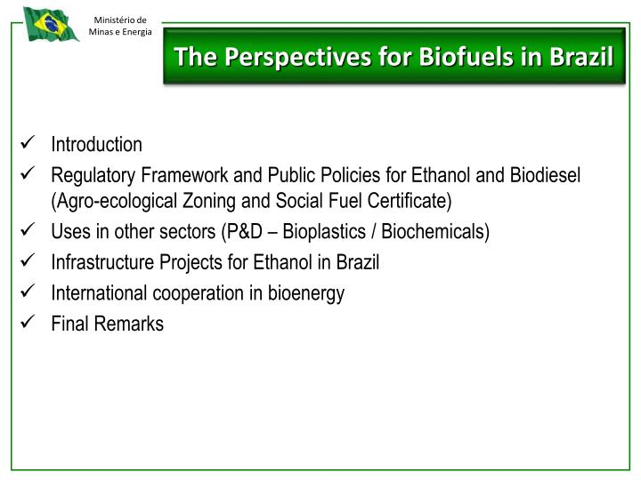 The Perspectives for Biofuels in Brazil