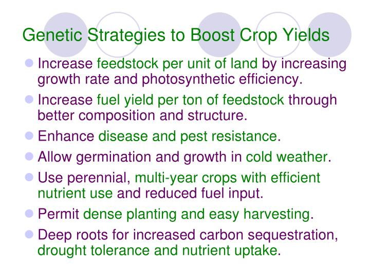 Genetic Strategies to Boost Crop Yields