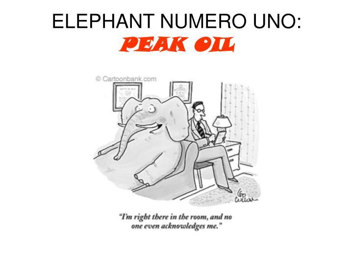 ELEPHANT NUMERO UNO: