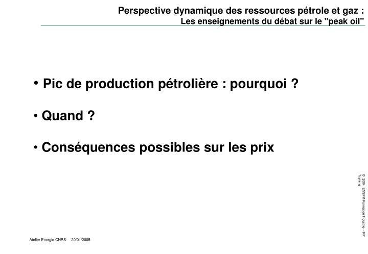 Perspective dynamique des ressources pétrole et gaz :