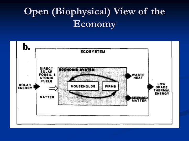 Open (Biophysical) View of the Economy