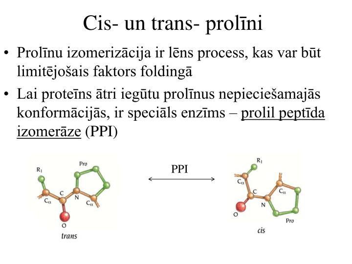 Cis- un trans- prolīni