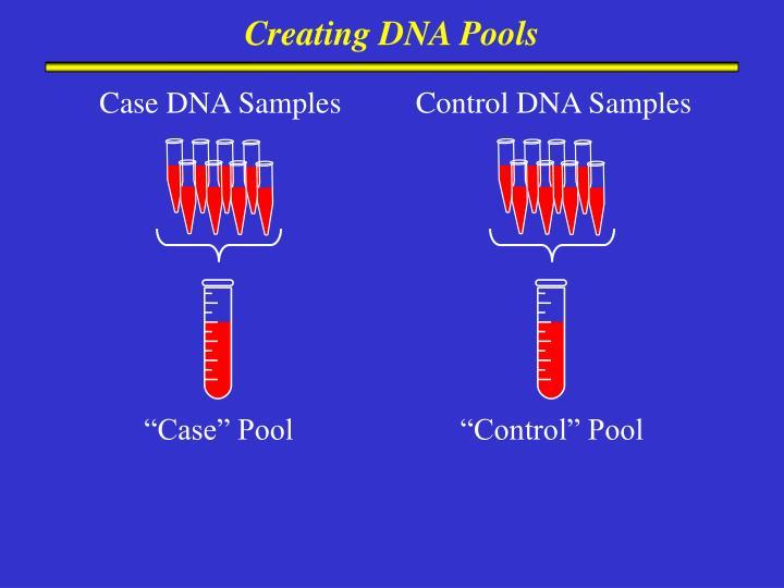 Creating DNA Pools