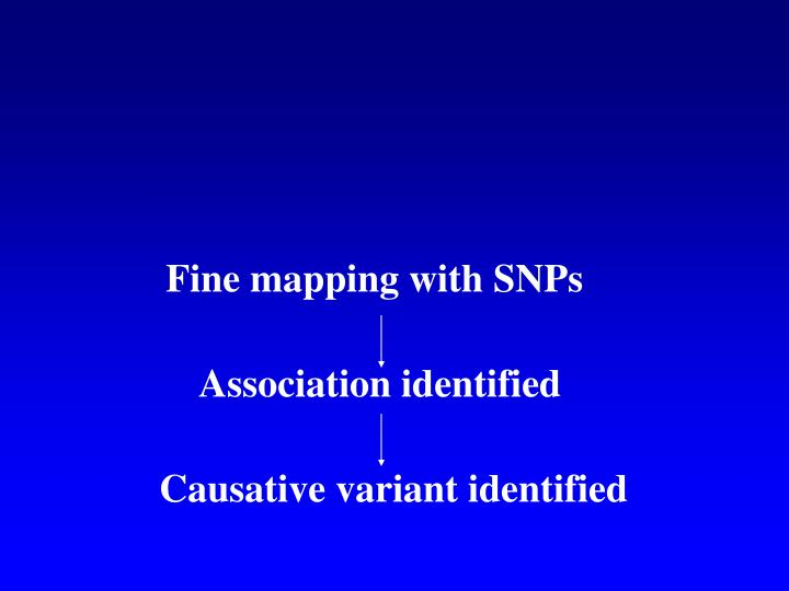 Fine mapping with SNPs