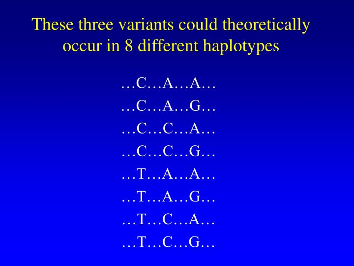 These three variants could theoretically occur in 8 different haplotypes