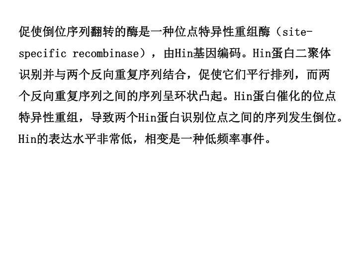 促使倒位序列翻转的酶是一种位点特异性重组酶(
