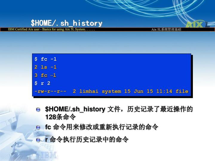 $HOME/.sh_history
