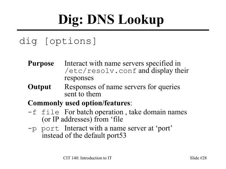 Dig: DNS Lookup