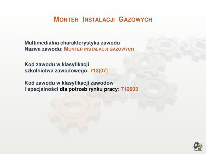 Monter  Instalacji  Gazowych