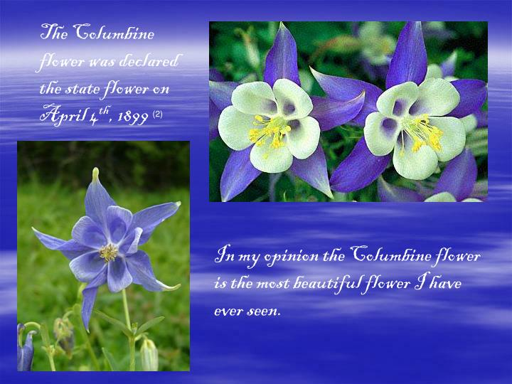 The Columbine flower was declared the state flower on April 4
