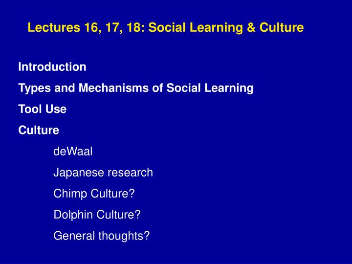 Lectures 16, 17, 18: Social Learning & Culture