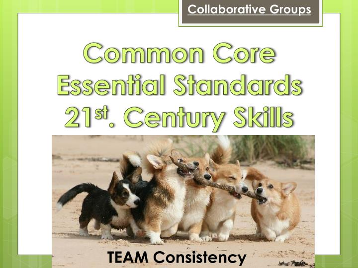 Collaborative Groups