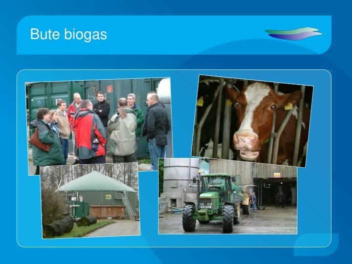 Bute biogas