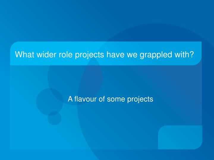 What wider role projects have we grappled with?