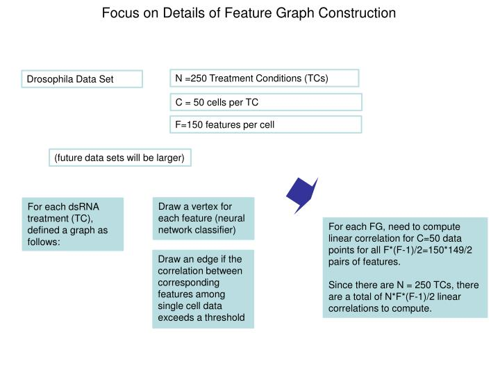 Focus on Details of Feature Graph Construction