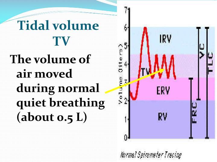 Tidal volume     TV