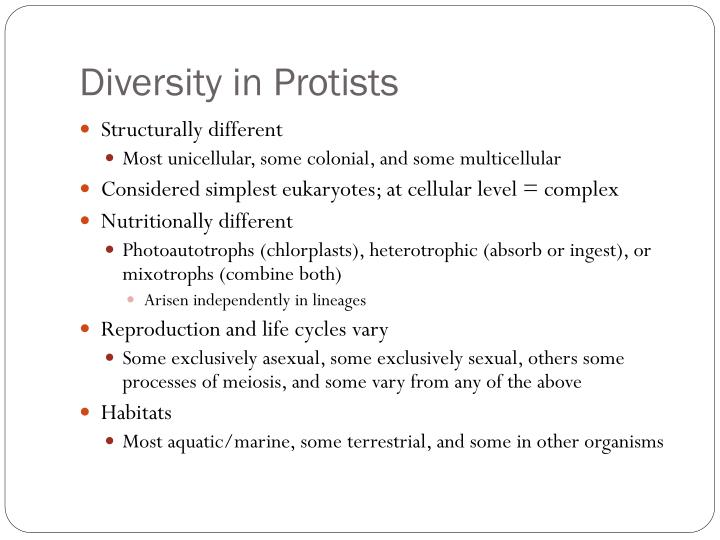 Diversity in Protists