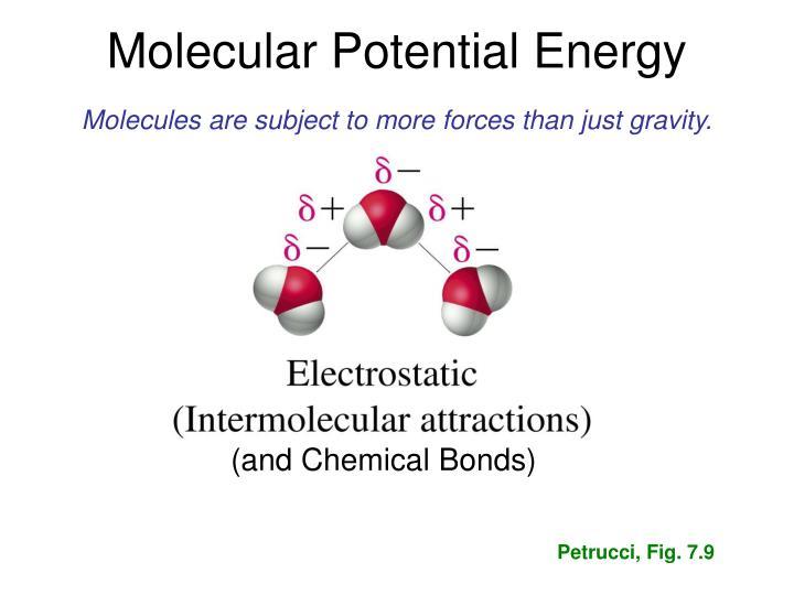 Molecular Potential Energy