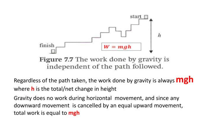 Regardless of the path taken, the work done by gravity is always