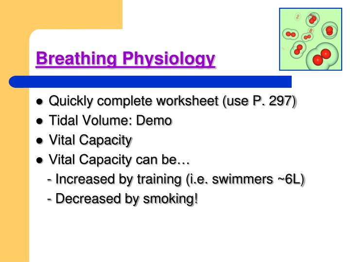 Breathing Physiology