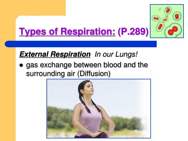 Types of Respiration:
