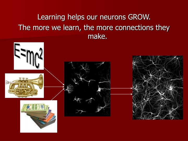 Learning helps our neurons GROW.