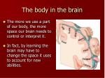 the body in the brain1