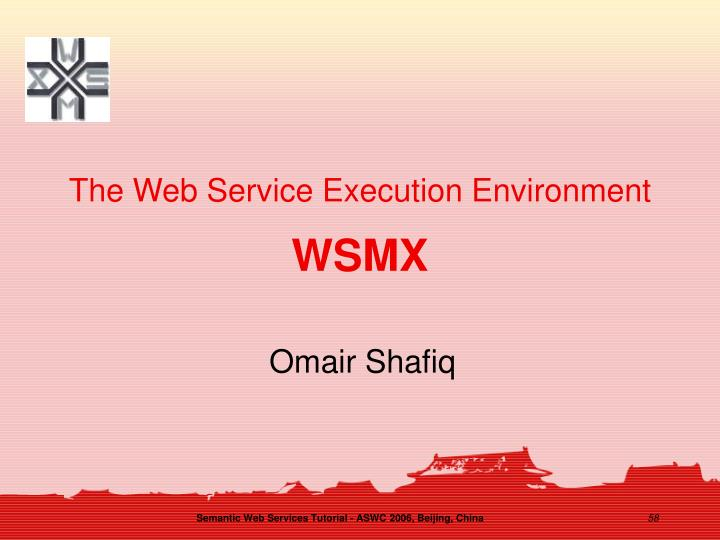 The Web Service Execution Environment