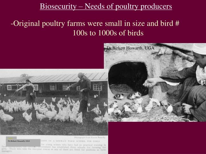 Biosecurity – Needs of poultry producers