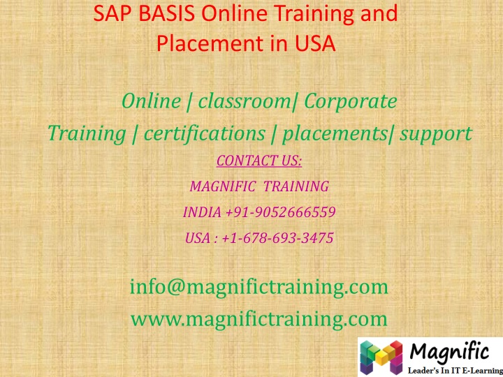 sap basis online training and placement in usa n.