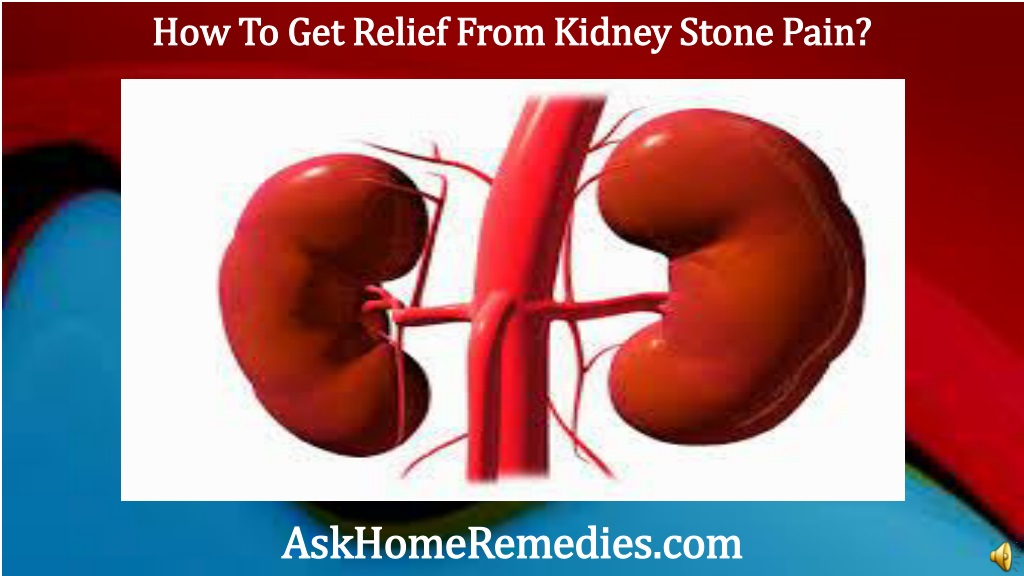 Ppt How To Get Relief From Kidney Stone Pain Powerpoint Presentation Id 1499878