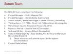 scrum team