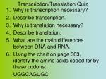 transcription translation quiz