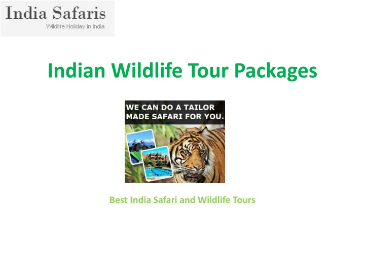 indian wildlife tour p ackages n.